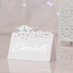 Love Birds Name Place Cards