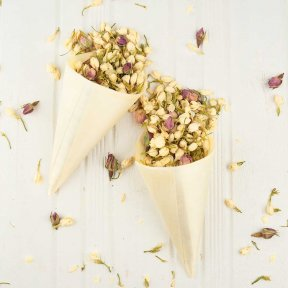 Pine Wedding Confetti Cones
