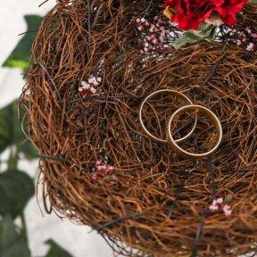 Love Nest Rings Holder